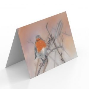 Robin Cards (Pack of 16)