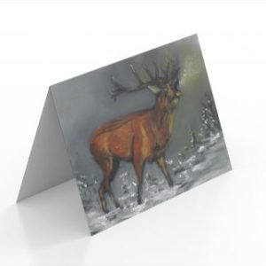 Reindeer Cards (Pack of 5)